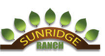 sunridge-L
